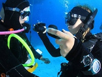 PADI Diving Open Water Diver  Course with Anna Schmitt in Egypt, Red Sea